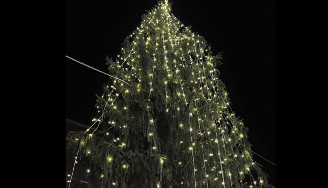 Граждане Рима сочли свою рождественскую елку самой уродливой вмире
